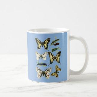 Mariposas, orugas y polillas de Swallowtail Taza De Café