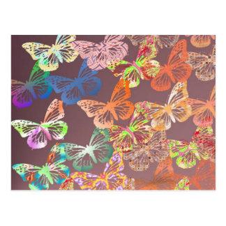 mariposas postal
