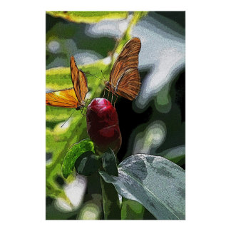 Mariposas Póster