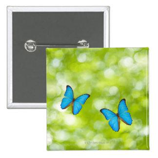 Mariposas que vuelan, compuesto de Digitaces Pin Cuadrado