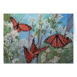 mariposas tarjeton