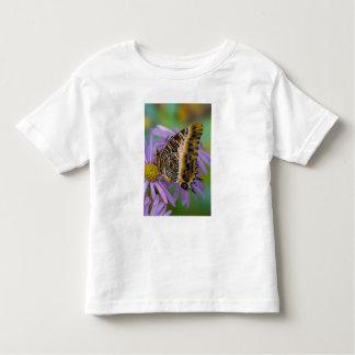 Mariposas tropicales 3 de Sammamish Washington Camisas