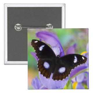Mariposas tropicales de Sammamish Washington Pin Cuadrada 5 Cm