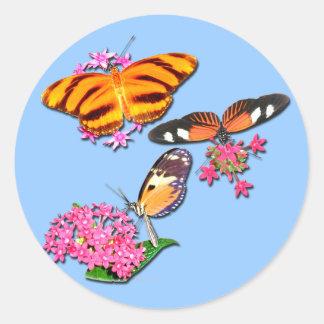 Mariposas tropicales pegatina redonda