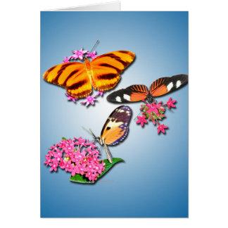 Mariposas tropicales tarjetón