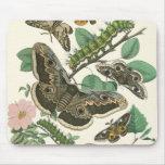 Mariposas y cojín de ratón del follaje del jardín alfombrilla de ratones