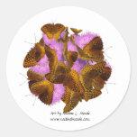 Mariposas y floraciones etiquetas