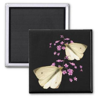 Mariposas y flores imanes