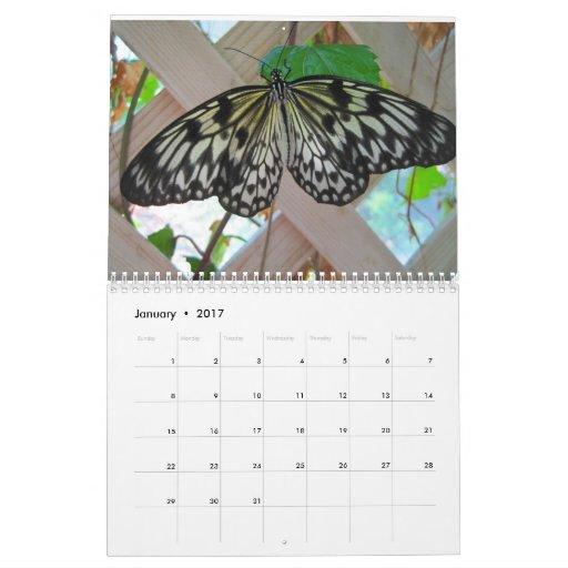 Mariposas y orquídeas calendario de pared