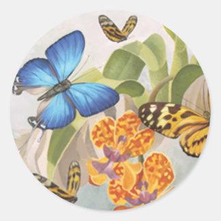 Mariposas y pegatina de las orquídeas