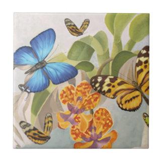 Mariposas y teja de la orquídea