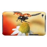 mariquita en la flor 2 iPod touch Case-Mate protector