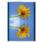 Mariquita en la flor por encima de la superficie c felicitacion