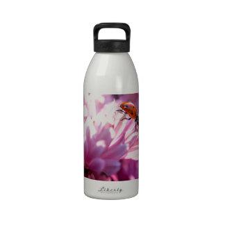 Mariquita en rosa botella de agua reutilizable