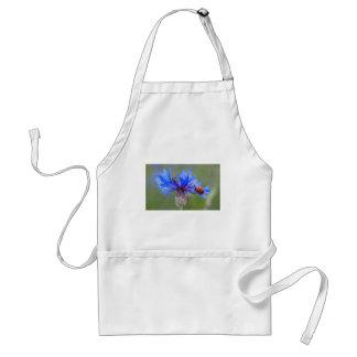 Mariquita en un cornflower azul delantal