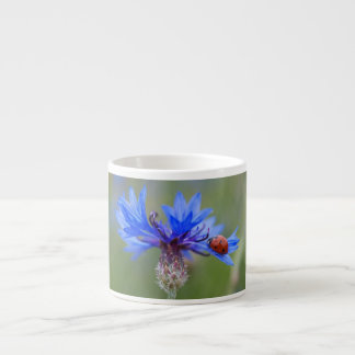 Mariquita en un cornflower azul taza de espresso