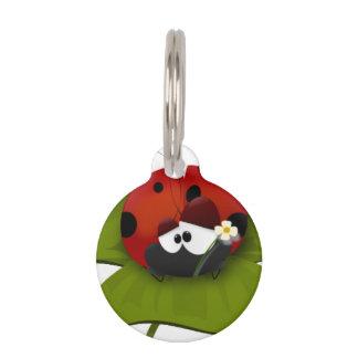Mariquita en una hoja verde placas de mascota
