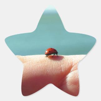 Mariquita en una mano de la mujer delante del lago pegatina en forma de estrella