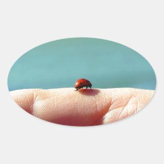 Mariquita en una mano de la mujer delante del lago pegatina ovalada