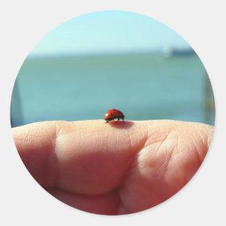 Mariquita en una mano de la mujer delante del lago pegatina redonda