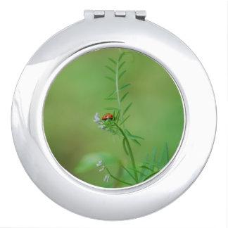 Mariquita en verde espejo para el bolso