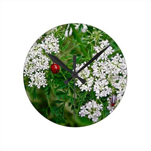 Mariquita Reloj De Pared