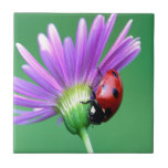 Mariquita y flor púrpura teja  ceramica