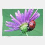 Mariquita y flor púrpura toallas