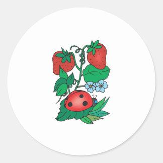 mariquita y fresas lindas etiqueta redonda