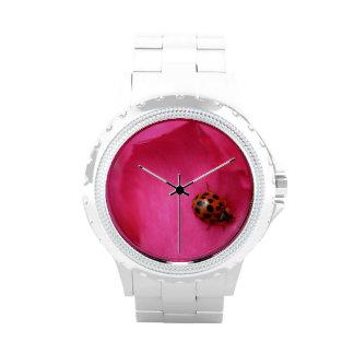 Mariquita y un color de rosa reloj