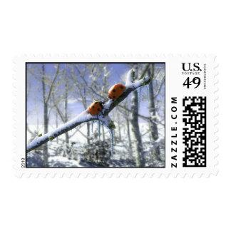 Mariquitas del navidad timbre postal