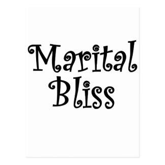 Marital Bliss Postcard