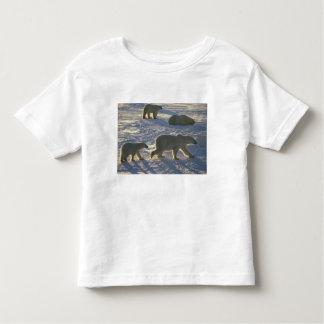 Maritimus del Ursus de los osos polares) dos Playera De Bebé