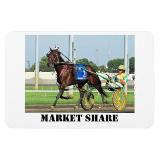 Market Share 4x6 Photo Magnet