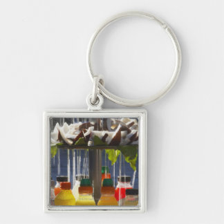 Market stall in Florence, Italy Keychain