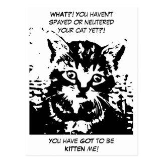 Márketing adaptable para la oficina veterinaria tarjeta postal