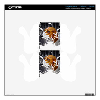 Markey Decal For PS3 Controller