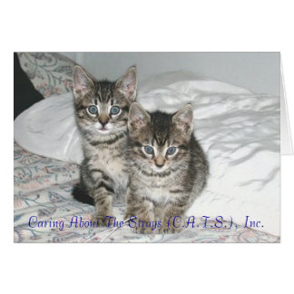 Marlon and Monty Notecards Card