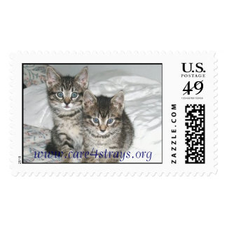 Marlon and Monty Postage
