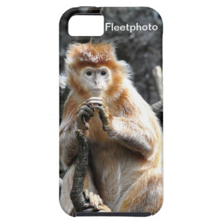 Marmalade Asian Monkey iPhone 5 Covers