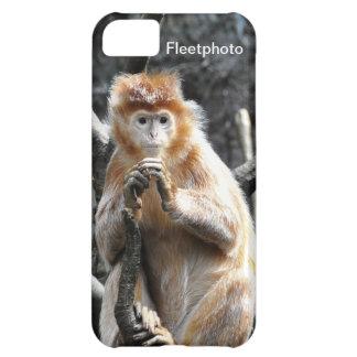 Marmalade Asian Monkey iPhone 5C Case