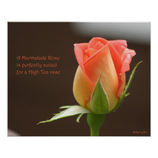 Marmalade Rose Poster: ROSE & PROSE 20x16