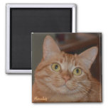 Marmalady 2 Inch Square Magnet