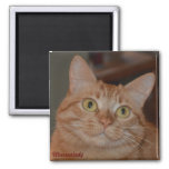 """Marmalady & """"The Smile"""" 2 Inch Square Magnet"""