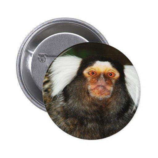 Marmoset Pin Redondo 5 Cm