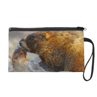 marmot and baby wristlet purses
