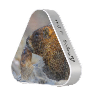 marmot and baby bluetooth speaker