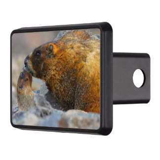 marmot and baby hitch covers
