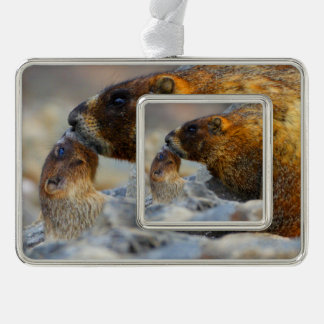 marmot and baby ornament