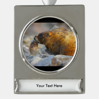 marmot and baby silver plated banner ornament
